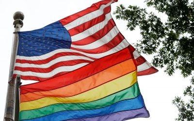 USA 2020, is a record of LGBT candidates